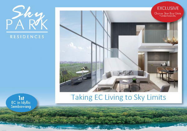 skypark promo april 2014